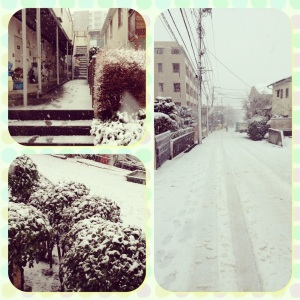 14 Januari 2013, Miyamaedaira